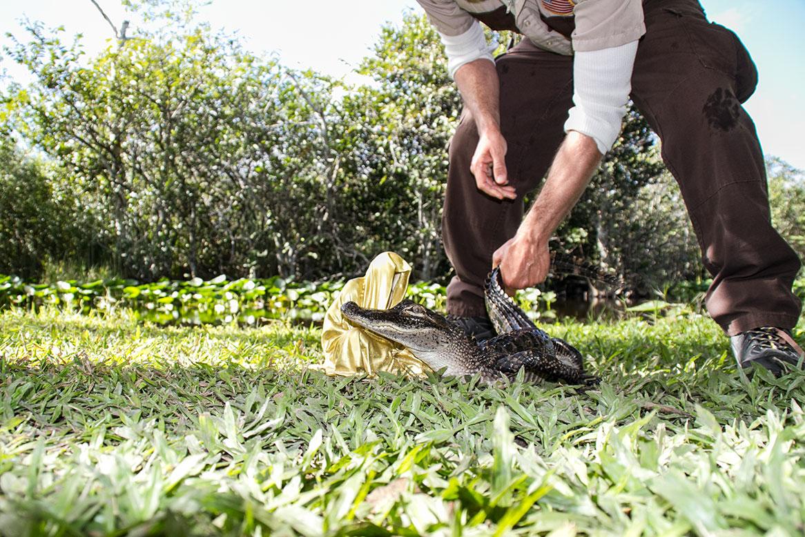 public-art-basel-miami-beach-fair-aligator-animal-usa-everglades-florida-guardians-of-time-manfred-kili-kielnhofer-contemporary-fine-art-modern-arts-design-antiques-sculpture-136